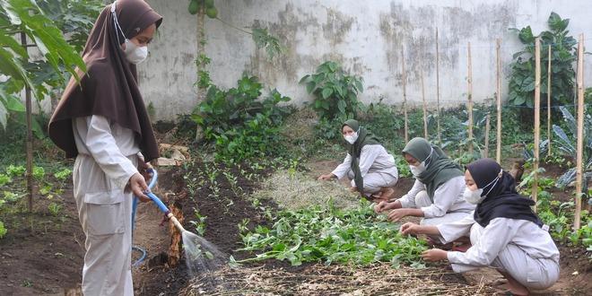 Mahasiswa dari Jember Belajar Pertanian Organik di Kota Malang - Pemerintah Kota Malang