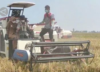 Mentan bangga petani mampu bertahan di tengah pandemi - ANTARA News