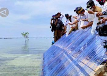 Menteri KKP akan jadikan Belitung Timur daerah budi daya kerapu - ANTARA News