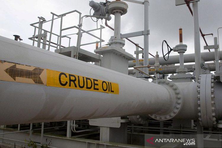 Minyak jatuh karena ambil untung, OPEC potong proyeksi permintaan 2021