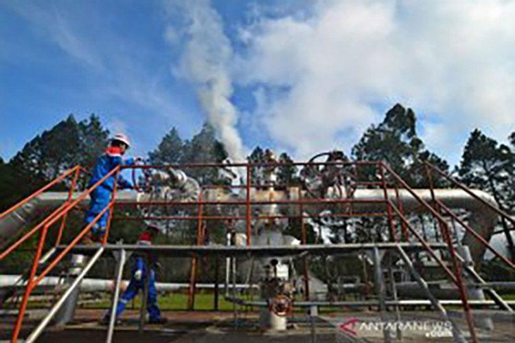 PGE targetkan kapasitas energi panas bumi naik dua kali lipat