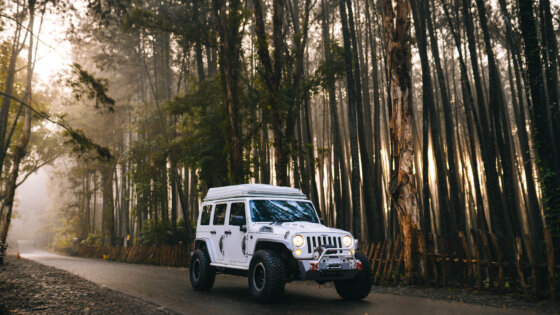 JEEP WRANGLER JK : Go Anywhere, Get Lost, Do Anything